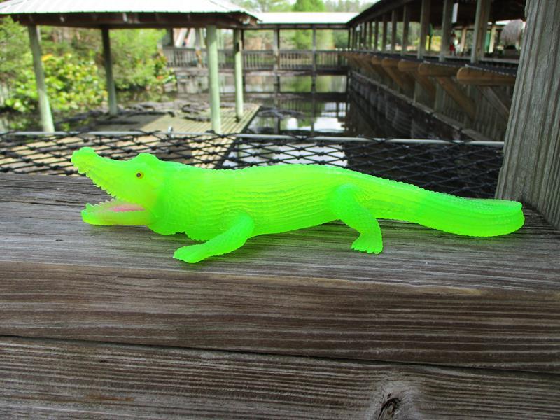 Neon Gator,T-31