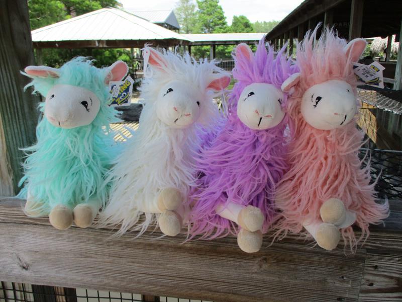 Woolly LLama Asst Colors,7184X2