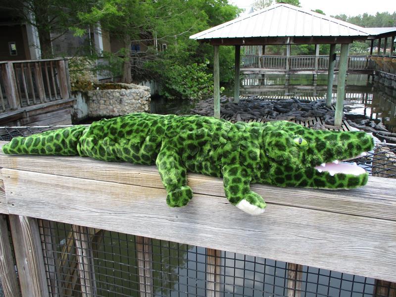 "36"" Green Gator,04015"