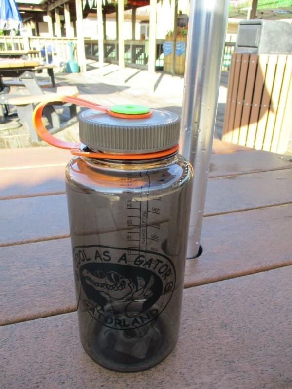 Cool as Gator Waterbottle,TRITAN32WATWDS
