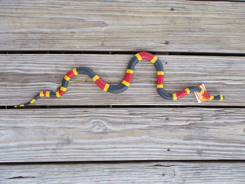 "Coral Snake 24"",257429"