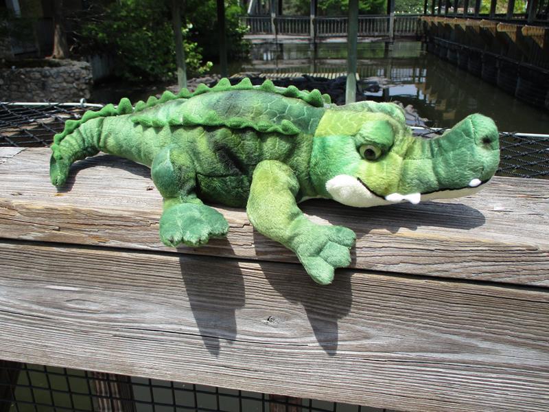17.75 Crocodile,AP-HLCRO