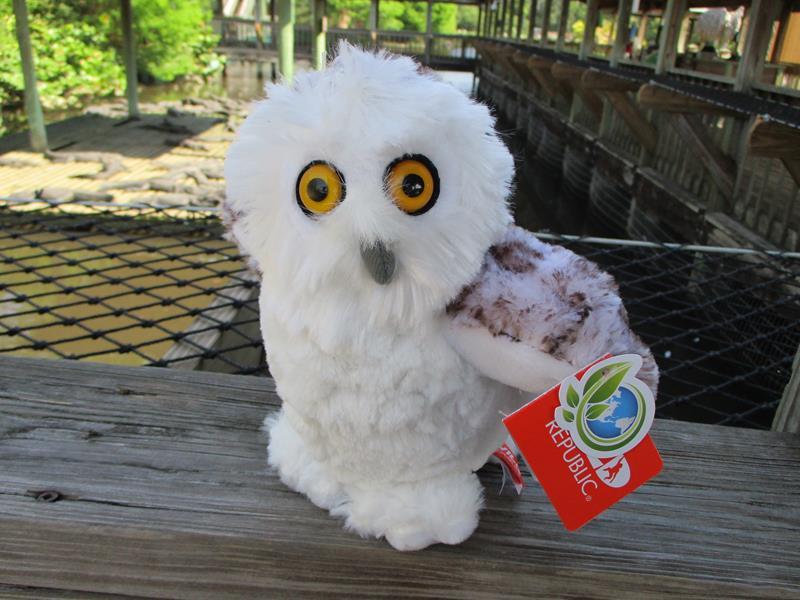 Ck MINI Snowy Owl,10849