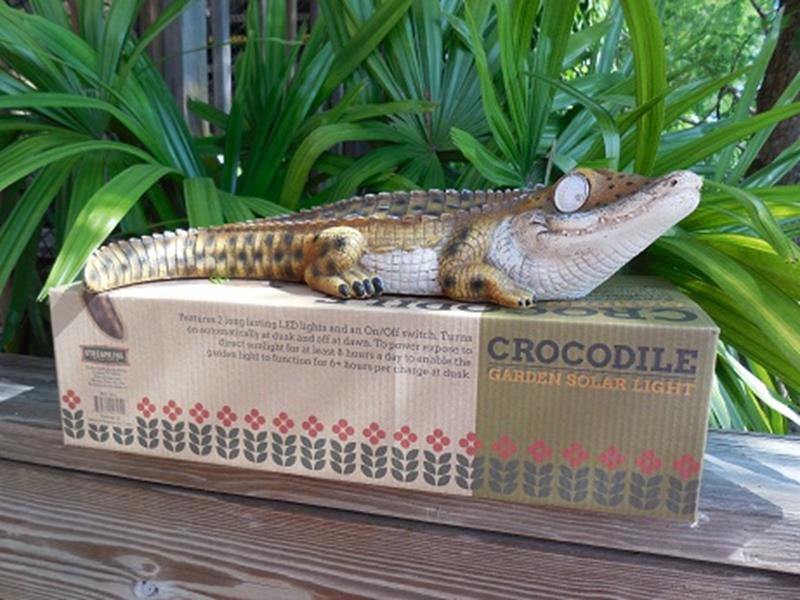 Solar Crocodile Garden Li,BGD345