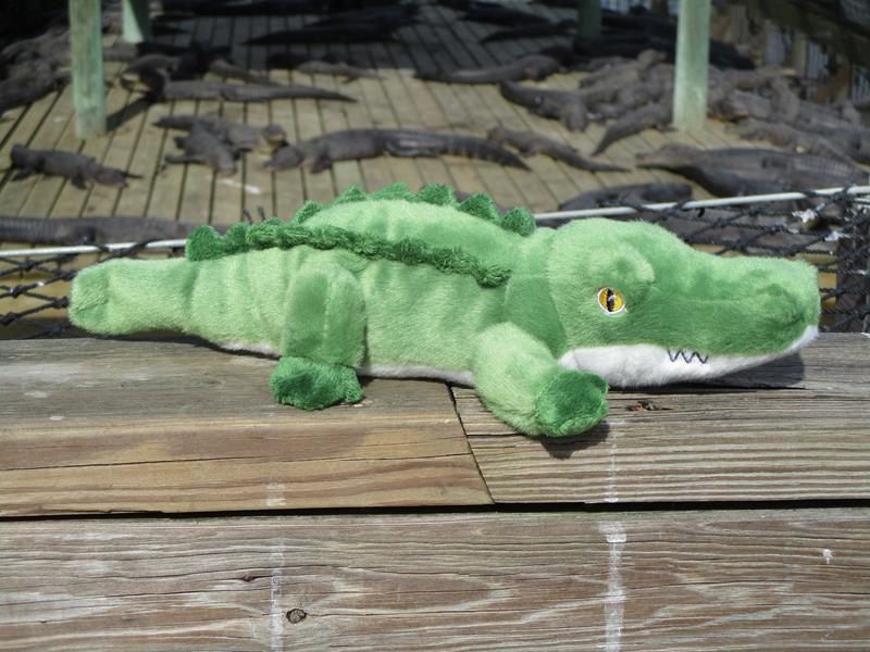 Small Swampy,31330