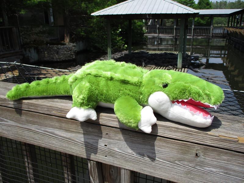 """30"""" Lying Alligator,A44874"""
