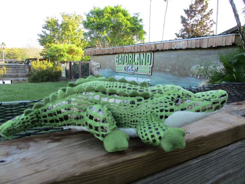 "14"" Alli Alligator,31470"