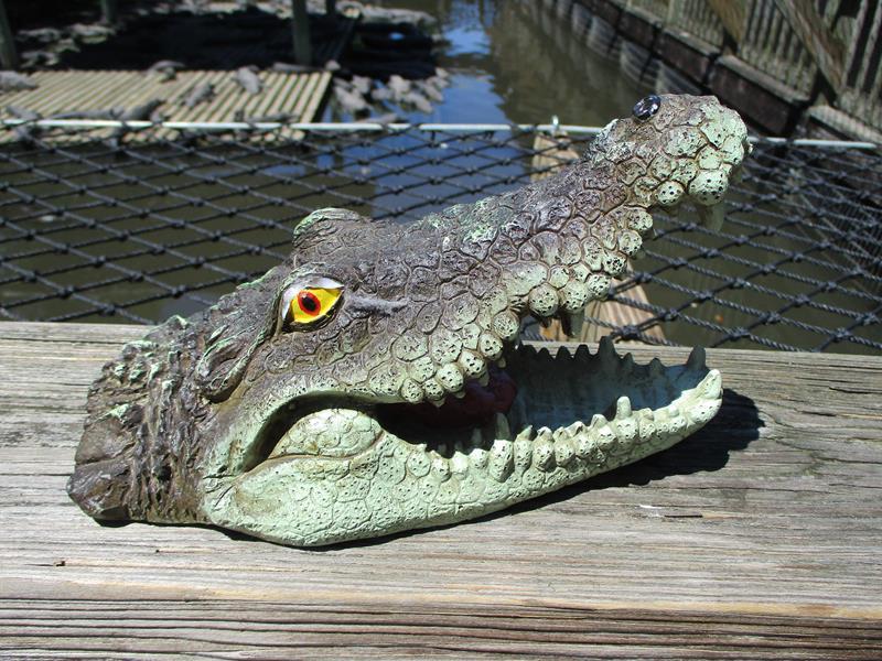 Floating Gator Head,FL64