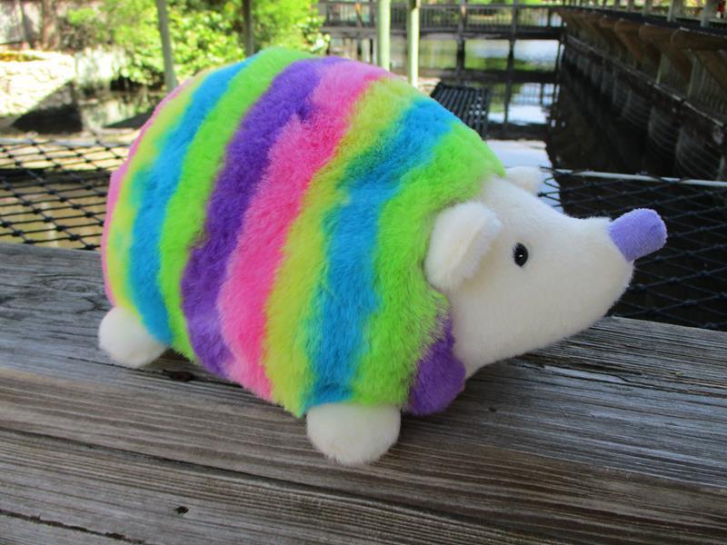 Rainbow Hedgie,16849