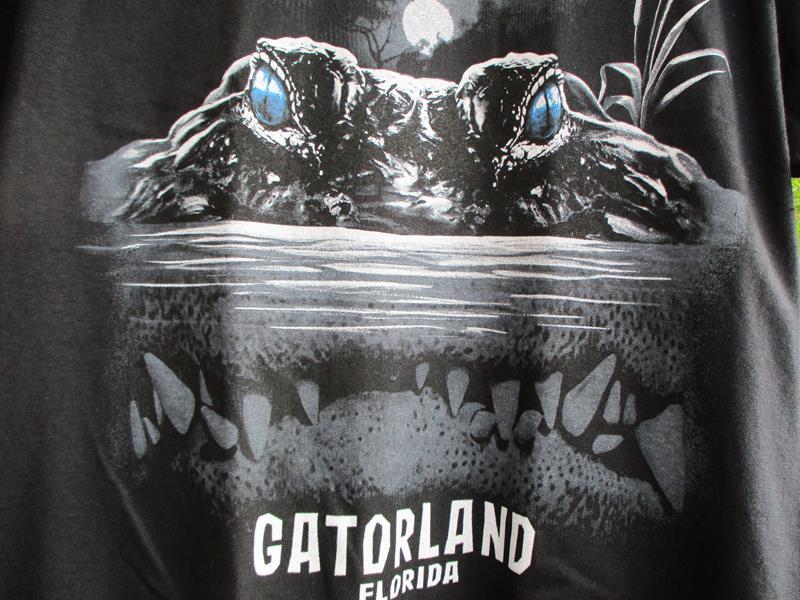 Gator Lurking,858FC-FF
