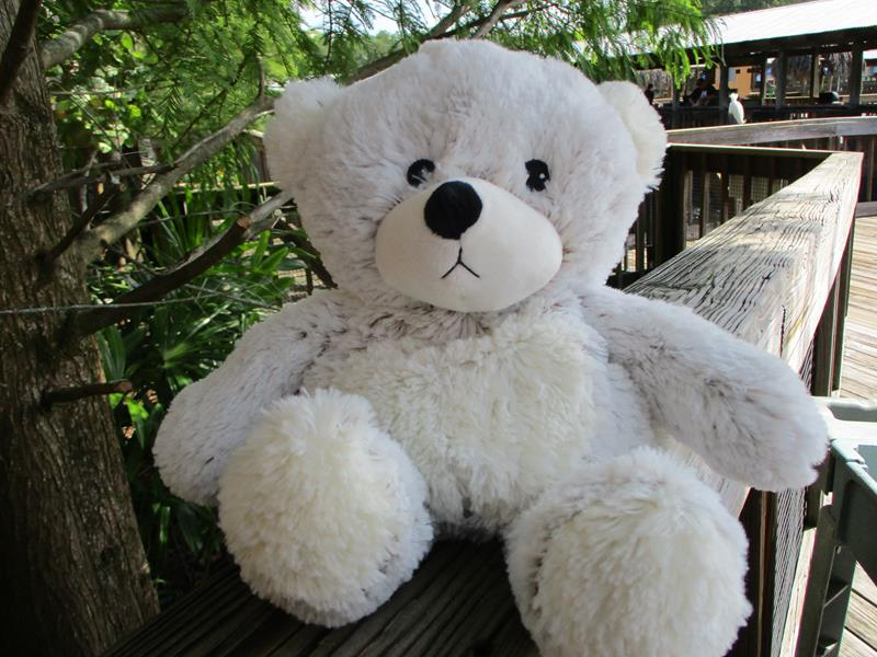 Warmies Marshmallow Bear,CP-BEA-5