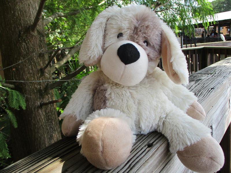 Puppy Warmies,CP-PUP-2
