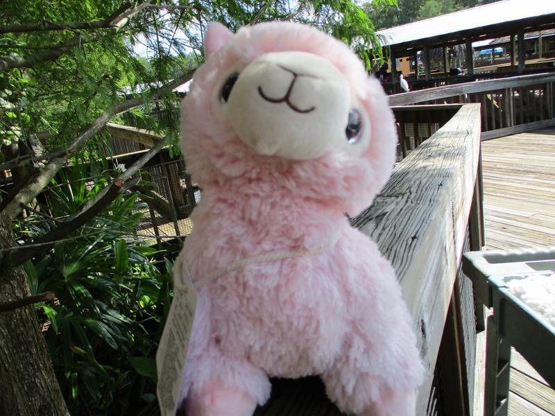 Pink Llama Warmies,CP-LLA-1